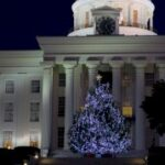 official-state-christmas-tree-was-delivered